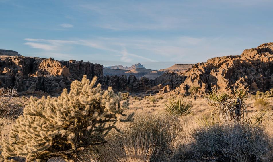 Mojave california travel
